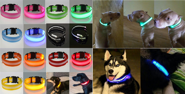 LED Flashing Light Up Night Safety Dog Collar