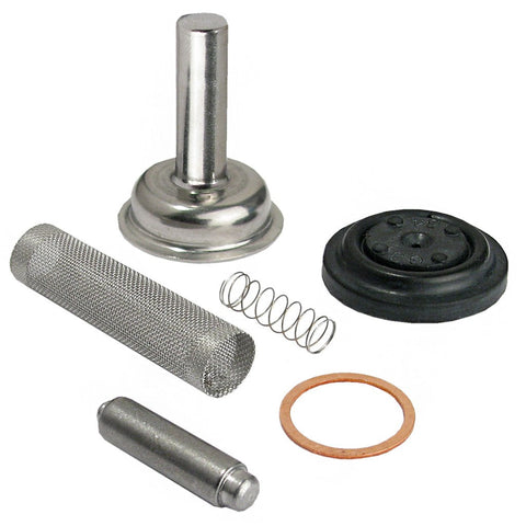 Sloan Solenoid Valve Repair Kit with Replacement Filter