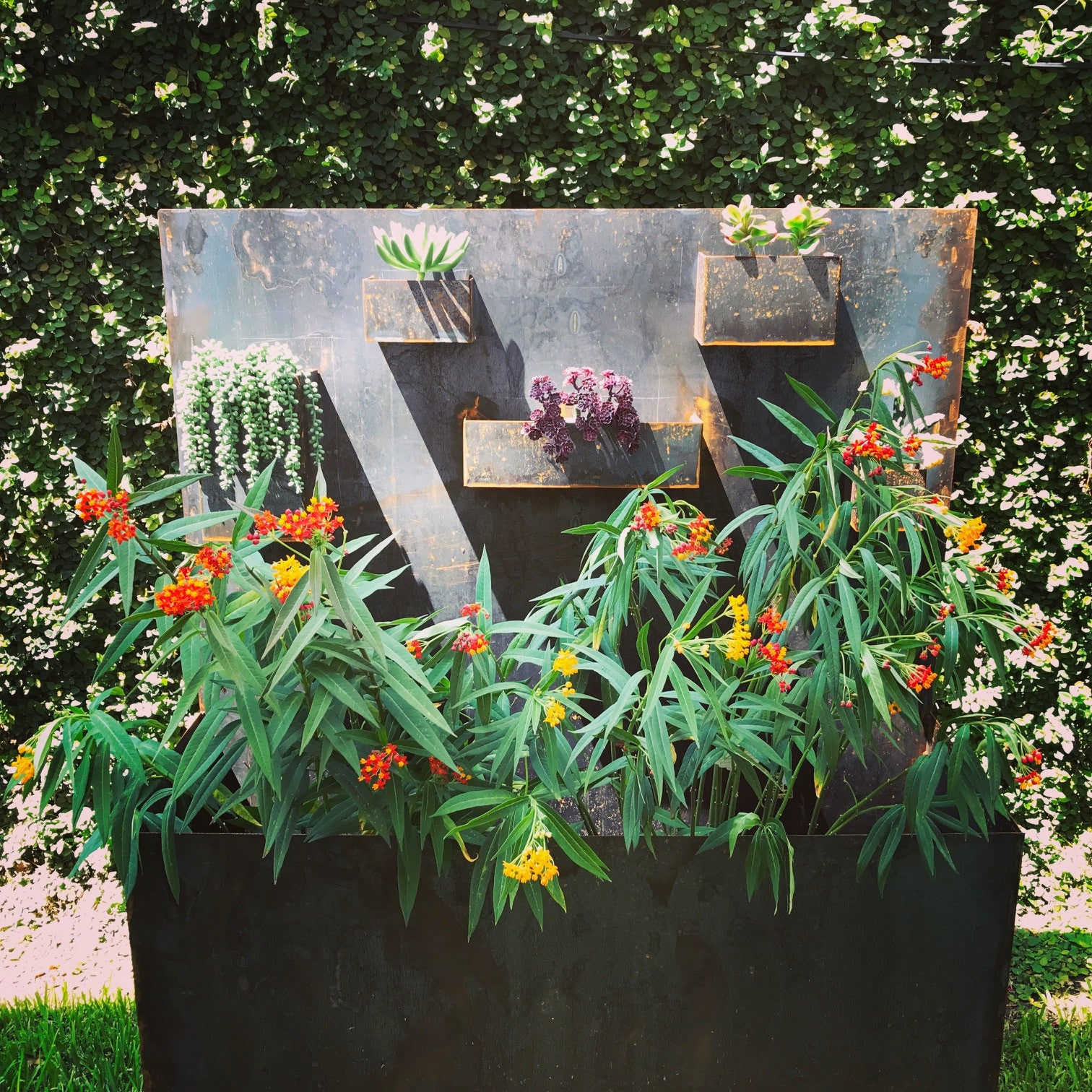 Corten planter made to weather outside