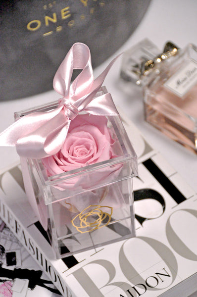 Acrylic Clear plastic box pink rose lasts 1 year no watering