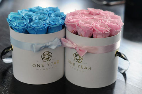 blue for a boy, pink for a girl roses