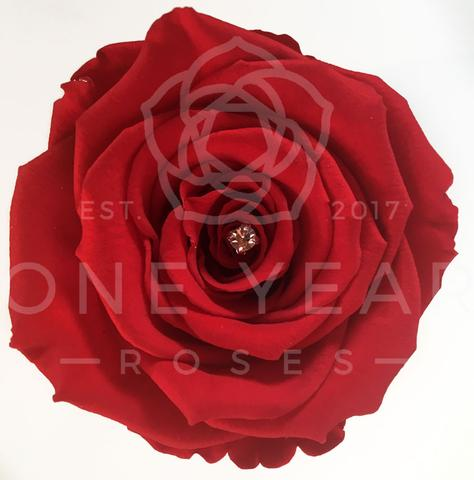 Diamanté Inside Some Roses