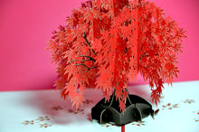 Autumn Maple Tree POP-UP 3D Card