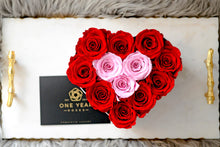 Suede Love Heart Box - Lasts 1 year