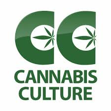 Cannabis Culture is Talking About Detox too!