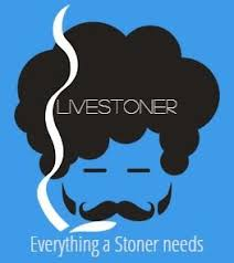 We've been Shouted on Livestoner!