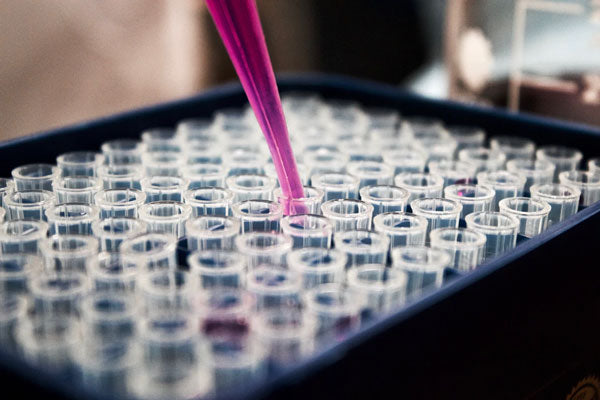 A pipette fills a block of test tubes