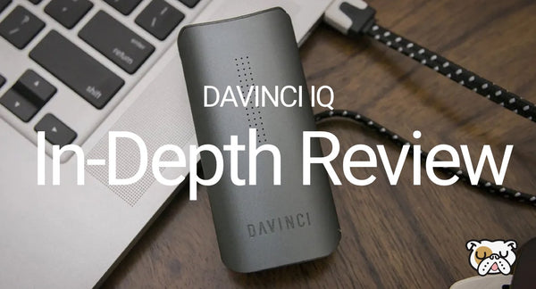 DaVinci IQ Review & Guide DopeBoo