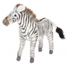 Grevy's Zebra Medium