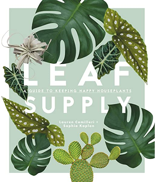 Leaf Supply: A Guide to Keeping Happy Houseplants - Mudpie San Francisco