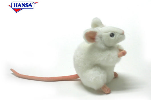 White German Mouse
