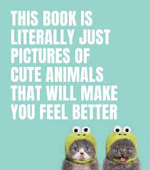 This Book is Literally Just Pictures of Cute Animals That Will Make You Feel Better - Mudpie San Francisco