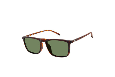 VC-4 Tortoise with G15 Polarized Clip