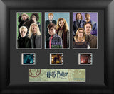 Harry Potter & the Deathly Hallows S1 Three Cell Std 13 X 11 Film Cell Numbered Limited Edition COA