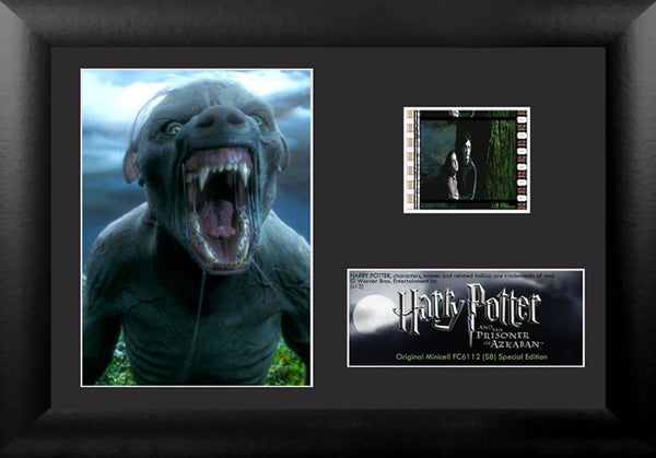 Harry Potter and the Prisoner of Azkaban™ (S8) Minicell