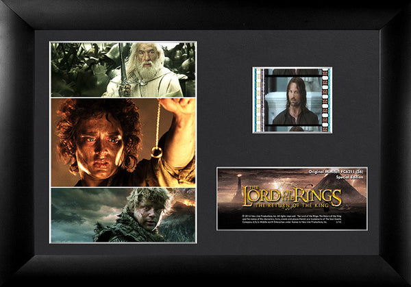 The Lord of the Rings: The Return of the King™ (S6) Minicell