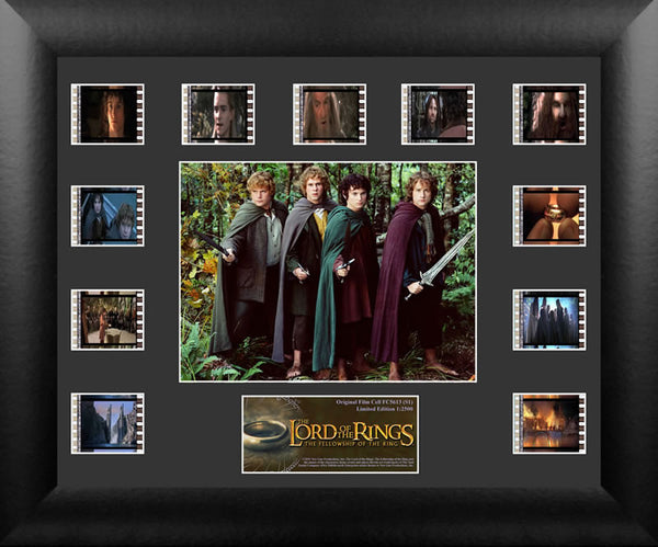 Lord of the Rings Fellowship of Ring Film Cell Numbered Limited Edition COA