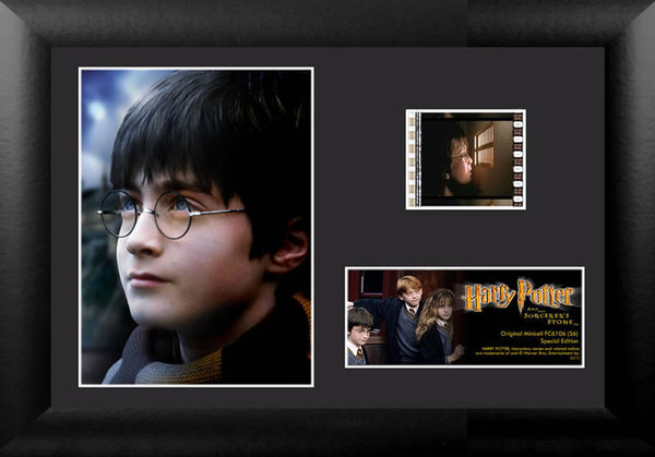 Harry Potter and the Sorcerer's Stone™ (S6) Minicell