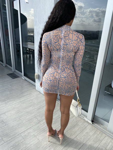 Loyal Mini Sheer Dress