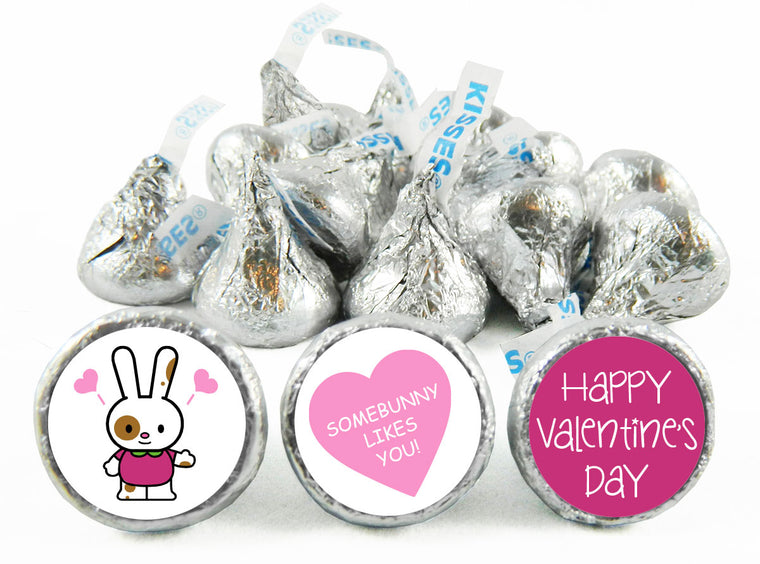 Some Bunny Loves You Valentine's Day Labels for Hershey's Kisses