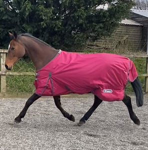 WHITAKER TURNOUT RUG LIGHTWEIGHT WHITWORTH 50 GM