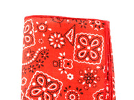 Bandana Print Cotton Pocket Square - Fine and Dandy