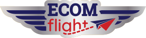 ECOMflight shopify experts providing coaching and training