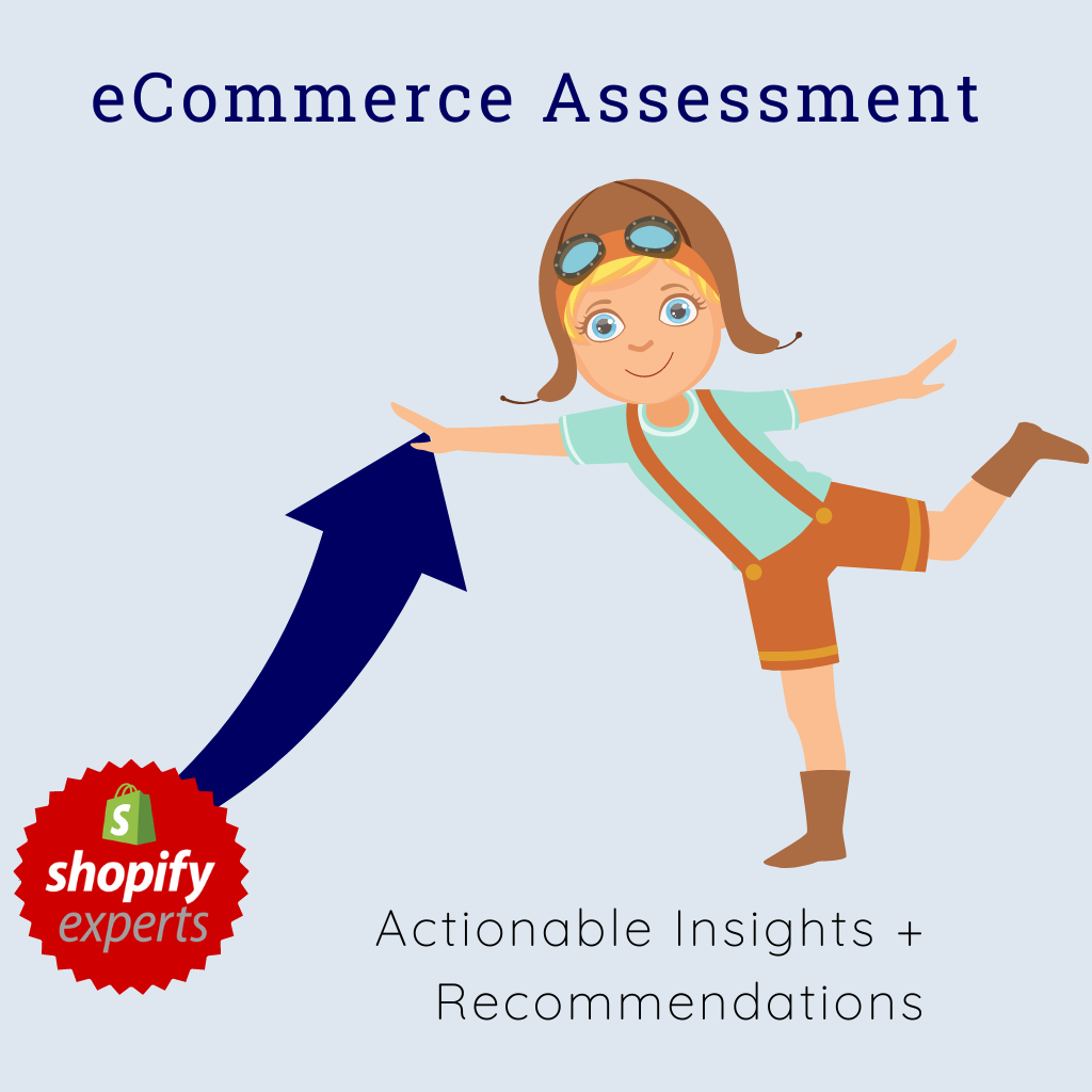 eCommerce Assessment with Shopify Expert Mo Nelson