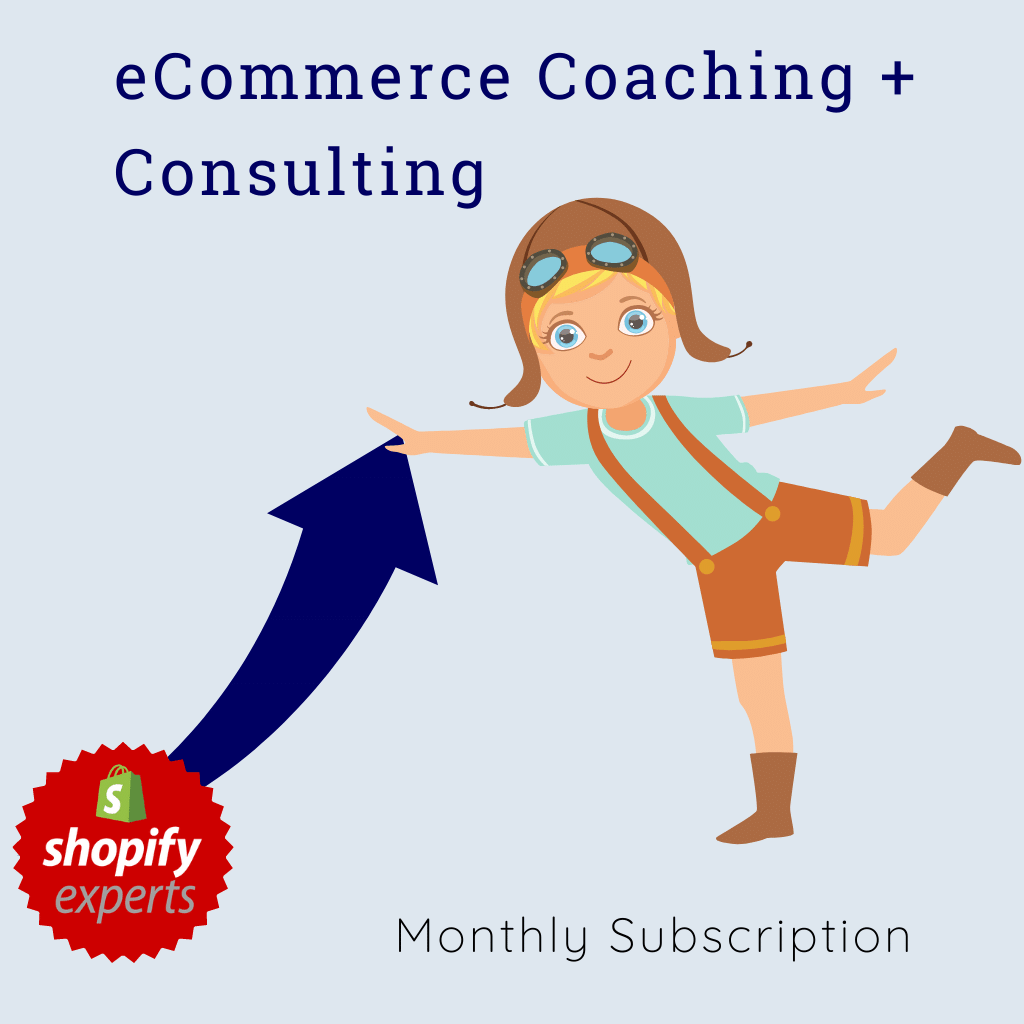 eCommerce Coaching + Consulting | Subscription - 2 Hours/Month