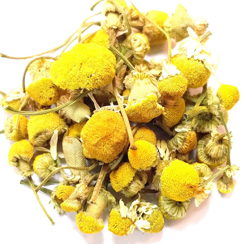 Herbal Egyptian Camomile
