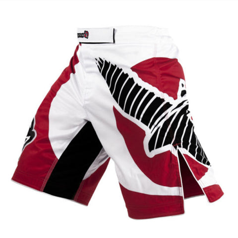 Fitness Combat Sports Shorts