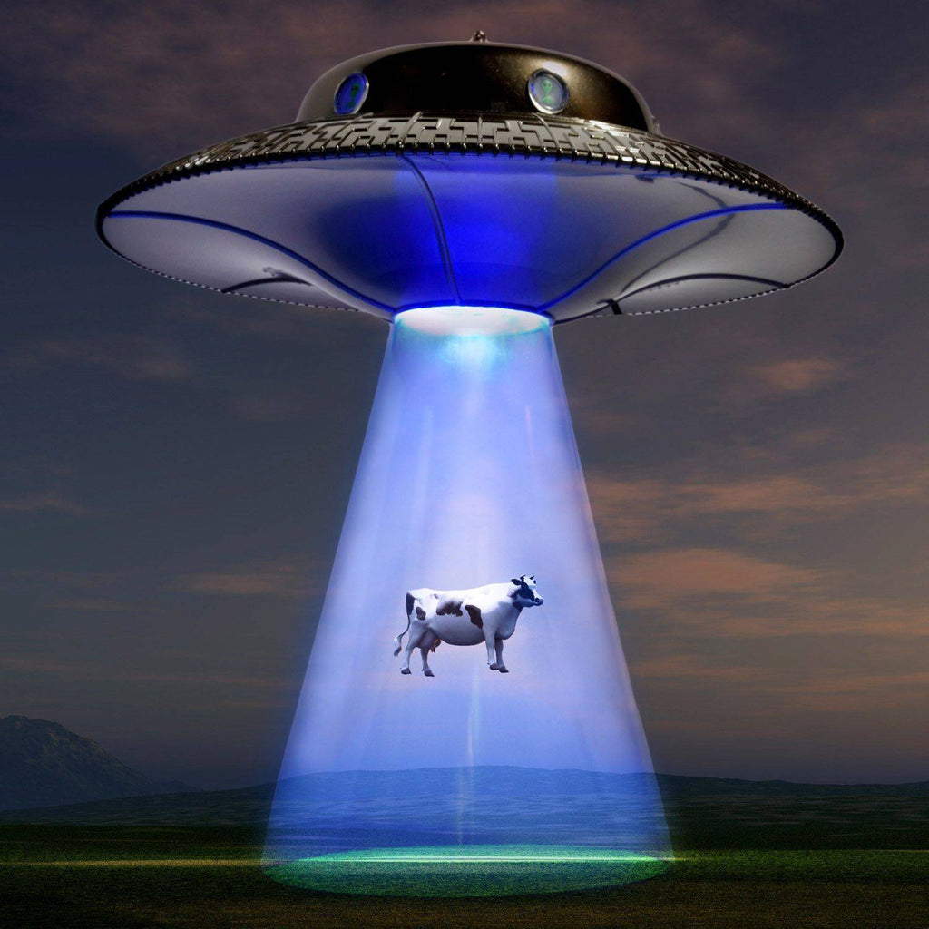 Amazing ... Home   Alien Abduction Lamp ...