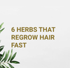 6 Herbs That Regrow Hair Fast