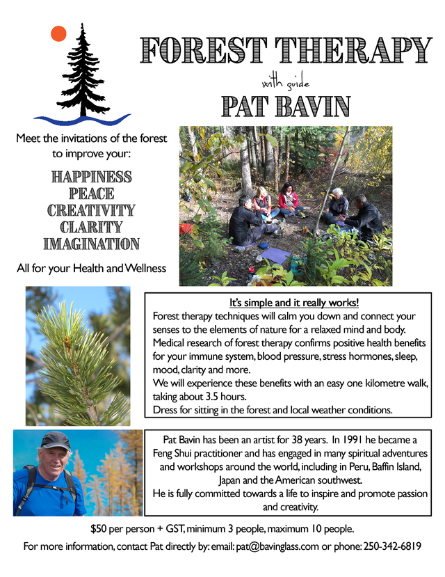 Forest Therapy - with guide Pat Bavin