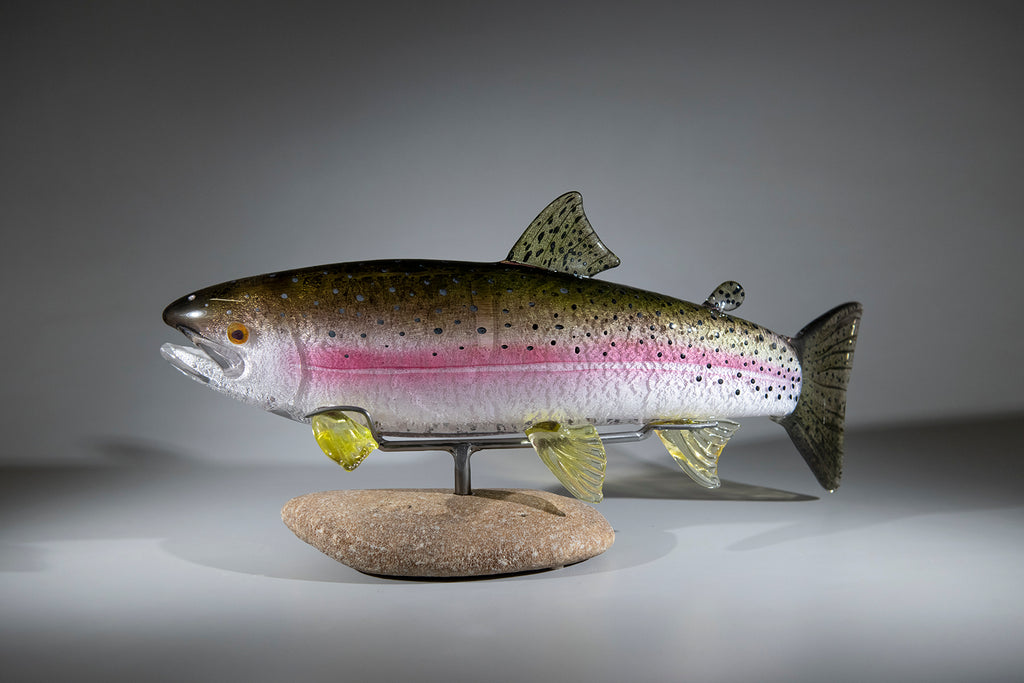 Rainbow Trout #181129-3