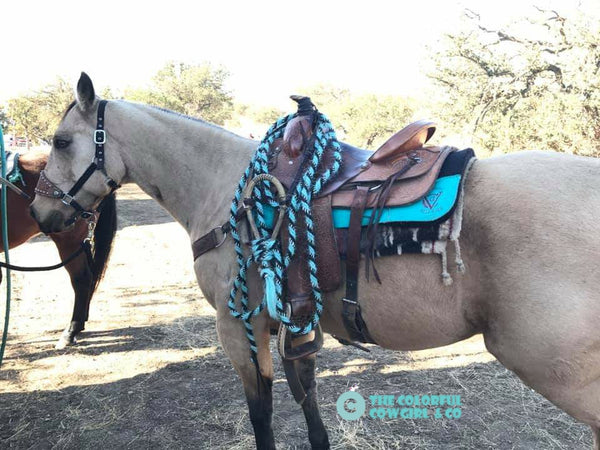Custom Braided Leather Bosal and Mecate Set