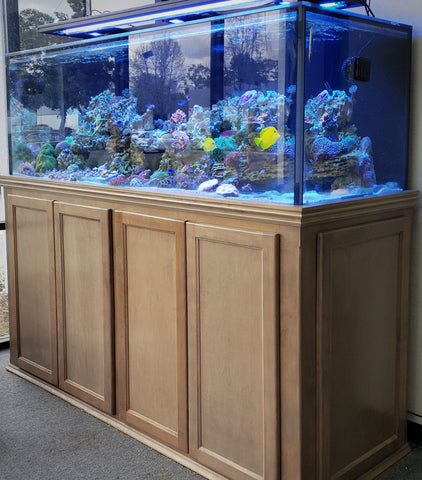 "72"" Long 220 Gallon Reef Aquarium"