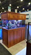 60x24x24 150 gallon Peninsula Aquarium with Traditional Stand and Canopy