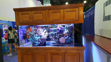 150 gallon reinforced Starphire reef peninsula aquarium custom build