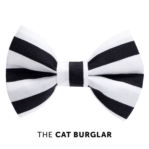 Cat bow tie - The Cat Burglar