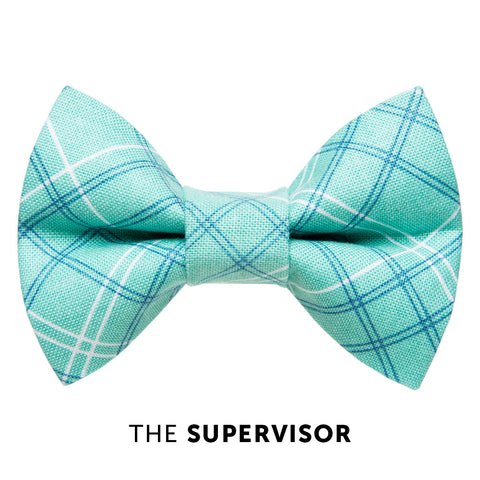 Cat bow tie - The Supervisor