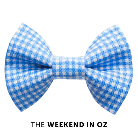 Cat bow tie - The Weekend in Oz