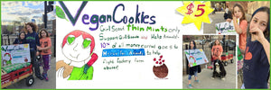 Thin Mints and Thick Rugs: Making the Right Choices