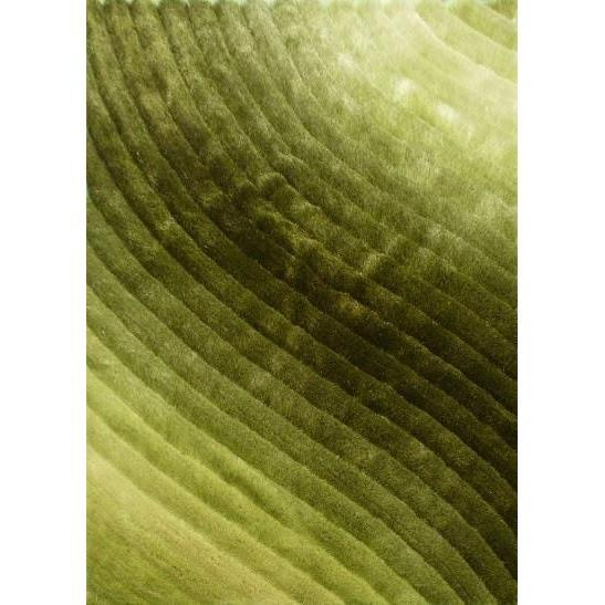 Shag Rug - Rug Factory Plus, Shaggy 3D 303 Green Area Rug