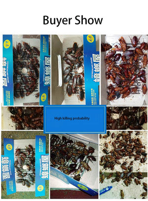 5pcs 10g Anti Cockroach Pesticide Control Gel Bait