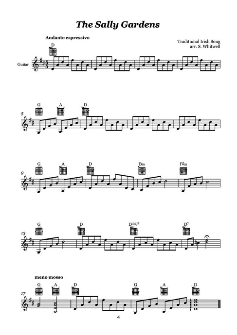 Digital extra parts for Repertoire Book 1 for the Beginner Flautist