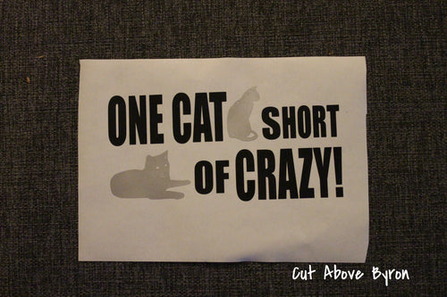 One cat short of crazy in black and silver