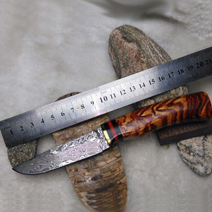 Free shipping Handmade Forged Damascus Hunting Knife Camping Survival Knife Fixed Blade Tactical Knife Cocobolo Hanlde Brown - VIKNIFE