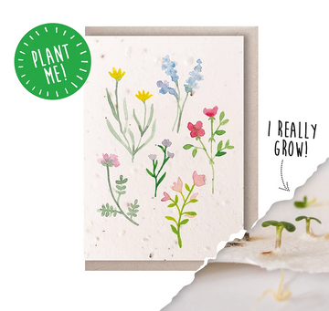 Wildflower (Seeded Card)
