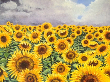 sunflowers - Jo Chandler